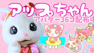 猫アイドル♡アップちゃんのモッフるーむ♡