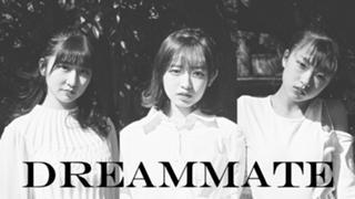 ハラ塾DREAMMATE OFFICIAL