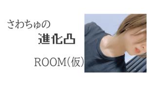 さわちゅの進化ROOM(仮)