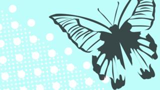 #徒然蝶々 ぜろぷろオーデ№7『蝶々』でした。