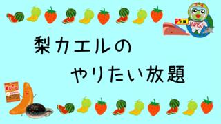 梨カエルのやりたい放題