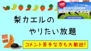 【ガチイベ!テレビ愛知】梨カエルのやりたい放題