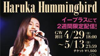Haruka is Humming #お歌♪