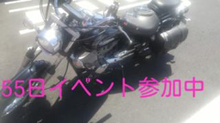 ハムたん55日イベ【アバター配布中】