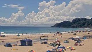 荒野・SPL・PUBG・桜・花火