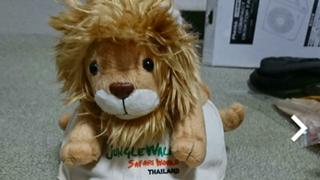 ライオンくん