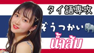 【ハンバーグコラボ配信する】国際なむそむ/น้ำส้ม/남쏨