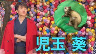 児玉葵【4/19〜猫ひた食リポイベ!】
