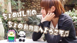 【26日18時〜イベ☆】ちょめぱんだのちょめ動物園♫