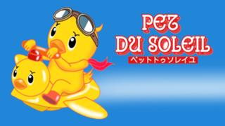 【26日~熊狩り!27日1周年🎊】🐻ペット・ドゥ・ソレイユ🐻