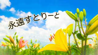 【1年2ヶ月有難う!!】♡Towa Museum♡