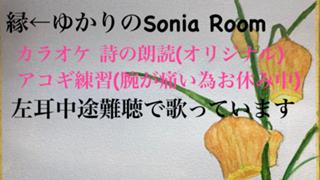 初アバ権達成 ゆかりʕ•ᴥ•ʔのSonia Room