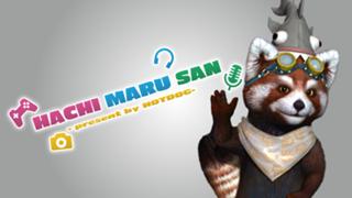 803 -HACHI MARU SAN-