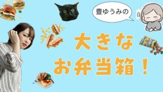 豊ゆうみのおおきなお弁当箱!