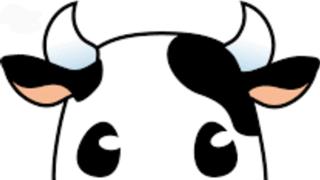 ❤️リクの適当(う´ω`し)牛の種部屋☀️