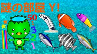 【お祭り決勝中】謎の部屋Y!🐠