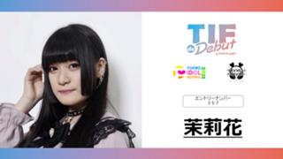 茉莉花 No.357 TIF de Debut2021