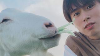 KAZUKI@ずっきーズ