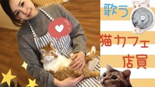 歌う猫カフェ店員ウニポ