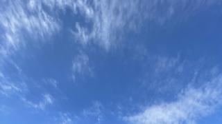 【アバ配布中♪】こーくんのもりもりLIVE〜☆