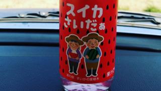 「4日~缶バッジイベ」うめたま【♂】の演歌の道room