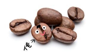 コーヒー豆の一緒に一杯いかがですか配信