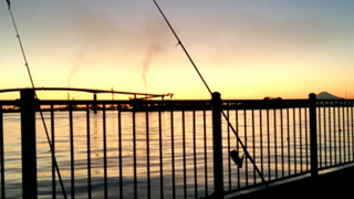 ガク海釣りルーム