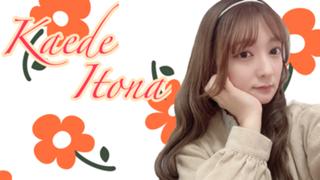 Maple王国Fromかえちゃん 【不定期配信】